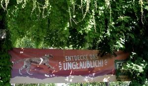 09.07.2016 | Judokas im Leipziger Zoo